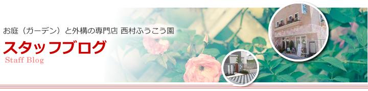 お庭(ガーデン)と外構の専門店 西村ふうこう園 スタッフブログ